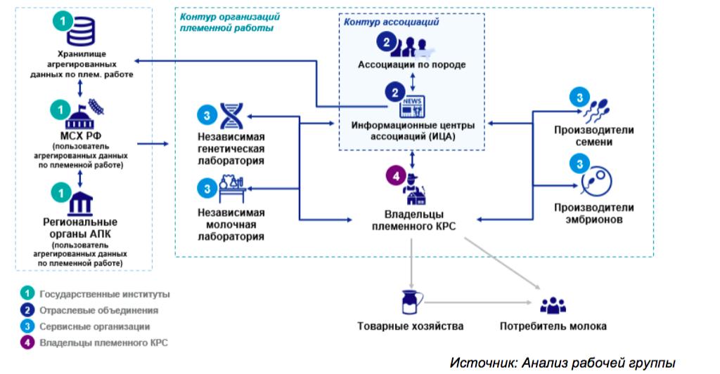 Российская Федерация может увеличить производство молока засчет генетики