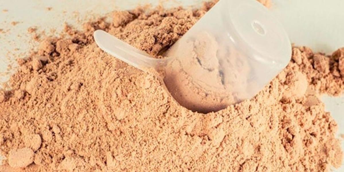 WPH - Гидролизат сывороточного белка